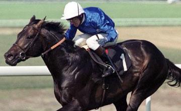 Cape Cross - Goodwood August 1999