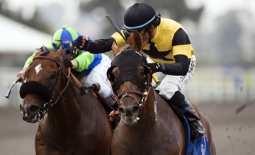 Awesome Gem defeats Rail Trip to win the Hollywood Gold Cup at Hollywood Park, Inglewood Calif. July 10, 2010