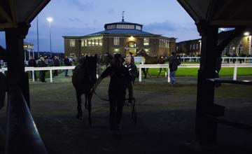 Tattersalls October Sales