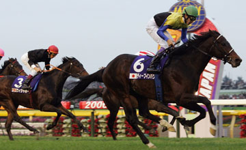 Deep Impact of Japan ridden by Yutaka Take runs past the finishing post to win the 26th Japan Cup at Tokyo Race Course on November 26, 2006 in Tokyo, Japan.