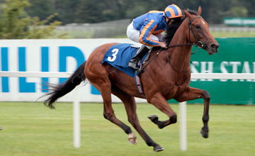 Zoffany - Leopardstown - 22.7.2010