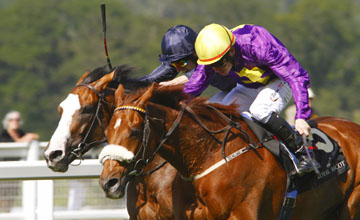 Rite Of Passage beats Age Of Aquarius to win the Ascot Gold Cup 17.06.2010