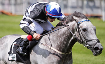 Chinese White - The Curragh 26.06.10