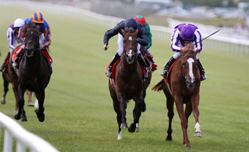 Cape Blanco wins The Irish Derby Curragh 27.06.2010