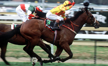 Redoute's Choice - Caulfield 09.10.99