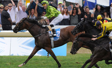 Michael Walker celebrates with a Pukana (Traditional Maori greeting) aboard Military Move as he crosses the line to win race 8 The Telecom New Zealand Derby during the Telecom Derby Day meeting at Ellerslie Racecourse on March 6, 2010 in Auckland, New Zea