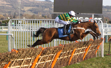 Binocular Wins the Champion Hurdle Cheltenham 16.03.2010