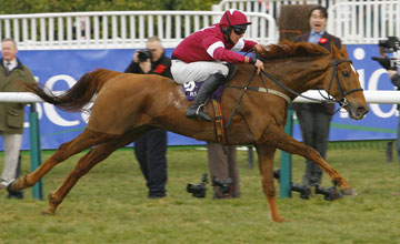 Weapon's Amnesty wins the RSA Cheltenham 17.03.2010