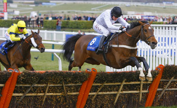 Spirit River wins the Coral Cup Cheltenham 17.03.2010