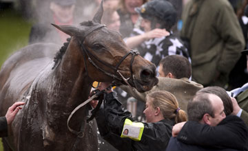 Imperial Commander after winning the Cheltenham Gold Cup 19.03.2010