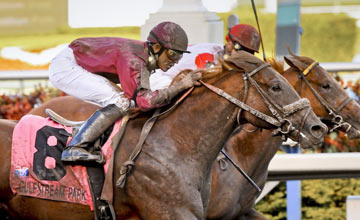 Ice Box wining the Florida Derby, Gulfstream Park 2010