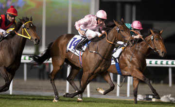 Dar Re Mi after wins the Sheema Classic Meydan 27.03.2010