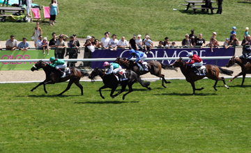Sarafina wins the Prix Saint Alary Longchamp 23.05.2010
