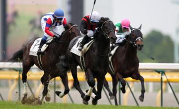 Eishin Flash Japanese Derby G1