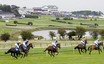 Hexham and Gowran Park pass morning inspections  Horse Racing News