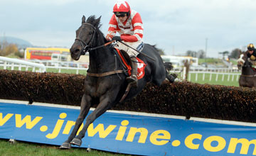 The Nightingale wins the ladbrokes.com Chase Down Royal 06.11.2010