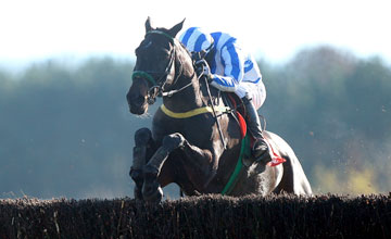 Realt Dubh win the Craddockstown Novice Chase Punchestown 14.11.2010