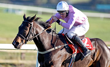 Solwhit and Davy Russell win the Dobbins & Madigans At Punchestiwn Hurdle Punchestown 14.11.2010