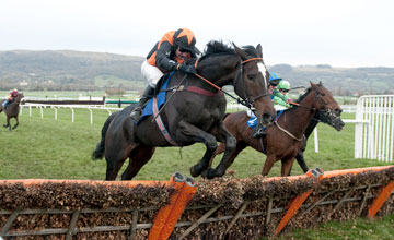 Champion Court leads over the final flight and wins the novices hurdle over 2m 5f Cheltenham Open Meeting 14.11.2010