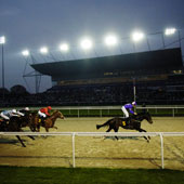 Kempton evening racing