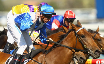 More Joyous - Caulfield (Australia) - 9/10/2010