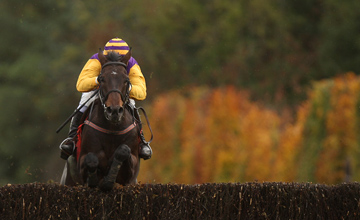 Noble Prince - Punchestown - 27.10.2010