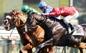 Fuisse wins Prix Du Moulin De Longchamp (Group 1) 05.09.10