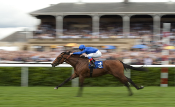 Saamidd wins the Champagne Stakes Doncaster 11.09.2010