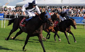 Arctic Cosmos wins the Doncaster St Leger Doncaster 11.09.2010