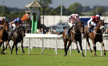 Pathfork wins the Vincent O'Brien National Stakes from The Curragh 11.09.2010