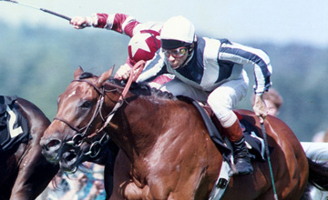 Kingmambo - wins the St James Palace Stakes - 1993
