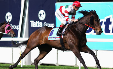 Hay List - Sportingbet Manikato Stakes, Moonee Valley, September 24, 2010