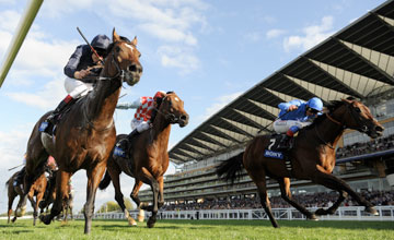 Poets Voice wins the Queen Elizabeth 11 Stakes Ascot 25.09.2010