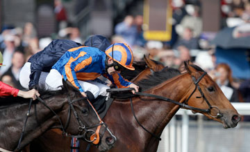 Chrysanthemum wins the C.L. Weld Park Stakes The Curragh 25.09.2010