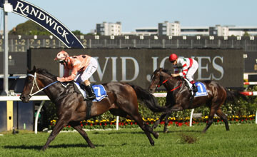Black Caviar (Luke Nolen) wins Darley T J Smith Stakes on AJC Australian Derby Day at Royal Randwick