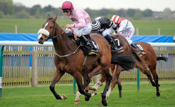 Sir Reginald - Newmarket - 13.04.2011