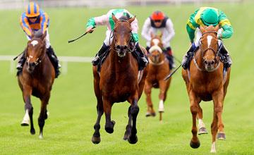 Fame And Glory - Vintage Crop Stakes Navan - 17.04.2011