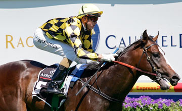 Beneteau crosses the line to win the Arrowfield Stud Blue Diamond Prelude (C & G) during the C.F. Orr Stakes Day meeting at Caulfield Racecourse on February 6, 2010