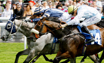 Secret Asset - York Ebor Meeting - 17.8.11