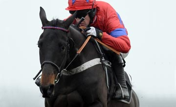 Sprinter Sacre - Ascot - 19/02/2011