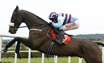 Rubi Light - Punchestown 11.12.2011