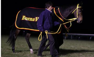 Buena Vista retirement - Nakayama Dec 2011