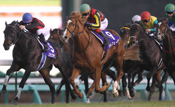 Orfevre wins Arima Kinen December 2011