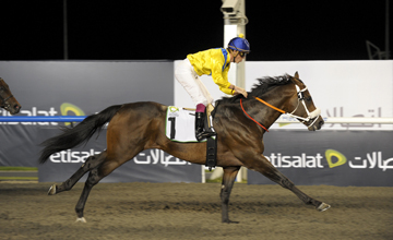 Bold Silvano - Meydan - 03.02.2011