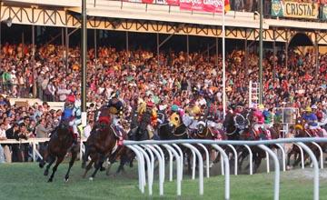 valparaiso horse racing live