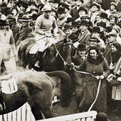 Golden Miller Cheltenham Gold Cup 1934