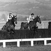 Arkle Cheltenham Gold Cup 1965