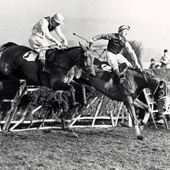 Hatton Grace wins Cheltenham 1951