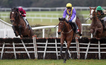 So Young - Punchestown 09.02.11