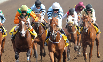 Harry Bentley (with his face showing ) during race one at Jebel Ali when winning on MH Al Wadi